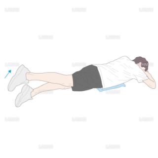 下肢・体幹筋力増強訓練 股関節伸展運動(Mサイズ)