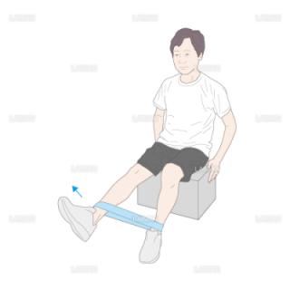 下肢・体幹筋力増強訓練 座位での膝伸展運動(Mサイズ)