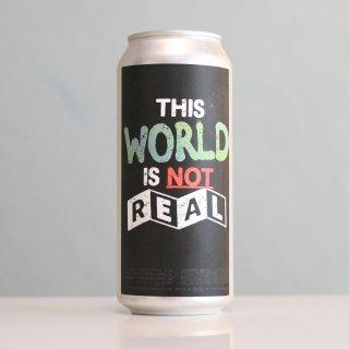 ザ ヴェイル ディスワールドイズノットリアル(THE VEIL This World is Not Real)