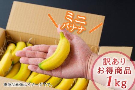 希少!国産ミニバナナNEXT716【1kg】