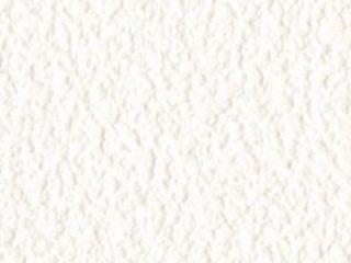 Ceiling/BB8461