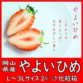 ◆送料無料◆こだわりの生産者太忠さんの大粒苺「やよいひめ」 岡山県産 2L〜3Lサイズ 2パック入