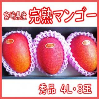 ◆送料無料◆宮�県産 完熟マンゴー 秀品 4Lサイズ /3玉入