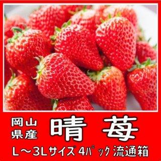 ◆送料無料◆晴苺・おいCベリー 岡山県産 2L〜3Lサイズ 4パック入 産地出荷箱