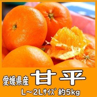 ◆送料無料◆甘平 愛媛県産 5�/〇印/L〜2Lサイズ