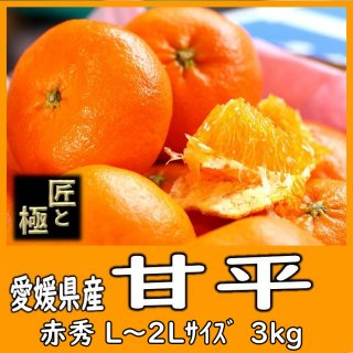 ◆送料無料◆甘平 愛媛県産 3�/赤秀 匠と極/L〜2Lサイズ