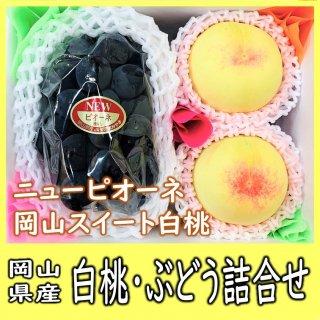 ◆送料無料◆白桃・ニューピオーネ 詰合せ 約1kg 岡山県産