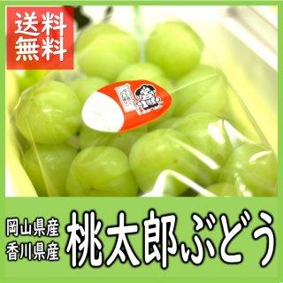 ◆送料無料◆桃太郎ぶどう 岡山県・香川県産 ご家庭用 約2kg/3〜5房入(房数指定不可)