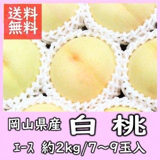 ◆送料無料◆岡山県産 白桃 エース 約2kg(7〜9玉入)【予約】