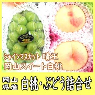 ◆送料無料◆白桃・シャインマスカット 詰合せ 約1kg 岡山県産【予約】