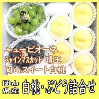 ◆送料無料◆白桃・シャインマスカット・ニューピオーネ 詰合せ 約2kg 岡山県産【予約】