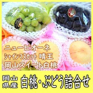 ◆送料無料◆白桃・シャインマスカット・ニューピオーネ 詰合せ 約1.9kg 岡山県産【予約】