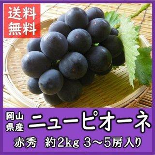 ◆送料無料◆岡山県産ニューピオーネ 露地物 赤秀品 約2kg/3〜5房入(房数指定不可)