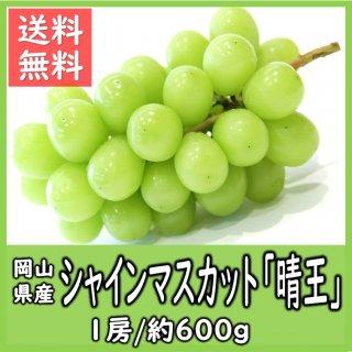 ◆送料無料◆岡山県産シャインマスカット「晴王」 秀品 露地物 1房/約600g