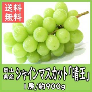 ◆送料無料◆岡山県産シャインマスカット「晴王」 秀品 露地物 1房/約900g
