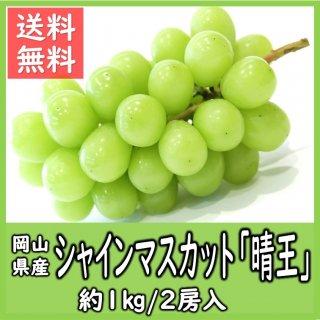 ◆送料無料◆岡山県産シャインマスカット「晴王」 秀品 露地物 約1kg 1箱/2房入