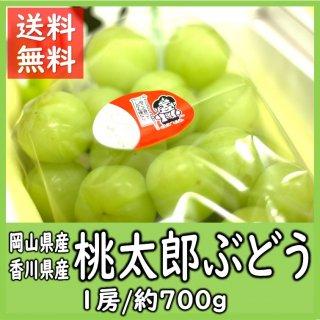 ◆送料無料◆桃太郎ぶどう 岡山県・香川県産 秀品 1房入700g