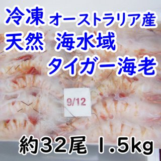 ◆送料無料◆冷凍 オーストラリアタイガー海老 約32尾 1.5kg