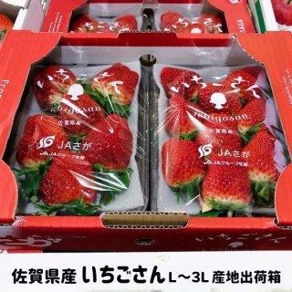 ◆送料無料◆いちごさん 佐賀県産 2L〜3Lサイズ 2パック入 産地出荷箱