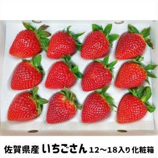 ◆送料無料◆いちごさん 佐賀県産 12〜18個入 化粧箱