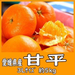 ◆送料無料◆甘平 愛媛県産 5�/〇印/3Lサイズ