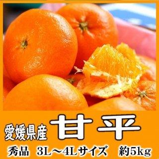 ◆送料無料◆甘平 愛媛県産 5�/青秀品/3Lサイズ