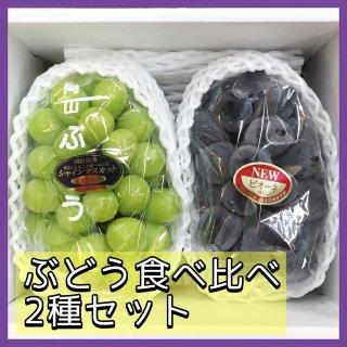 ◆送料無料◆岡山県産ぶどう 露地物 食べ比べセット 1箱/2房入(1房600g)