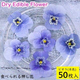 (全国送料無料)食べられる押し花 ドライエディブルフラワー  ビオラ(水色) 50枚入り 食用花 ドライフラワー  メール便(omtmb6268)
