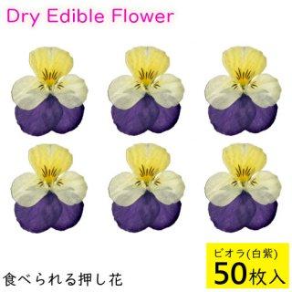 (全国送料無料)食べられる押し花 ドライエディブルフラワー  ビオラ(白紫) 50枚入り 食用花 ドライフラワー  メール便(omtmb6269)