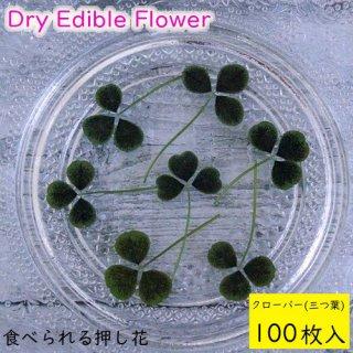 (全国送料無料)食べられる押し花 ドライエディブルフラワー  クローバー(三つ葉) 100枚入り 食用花 ドライフラワー  メール便(omtmb7229)