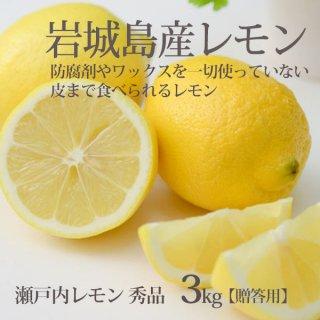 レモン 秀品 3kg 贈答用 防腐剤ワックスなし 愛媛