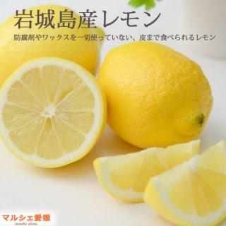 レモン 秀品 10kg  国産 防腐剤ワックスなし 贈答用 愛媛 瀬戸内