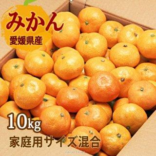 みかん 10kg サイズ混合 可品 温州みかん 10kg 一部地域送料無料