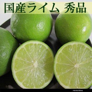 ライム 秀品 3kg 国産 皮ごと食べられる果汁たっぷり いわぎ島 一部地域送料無料