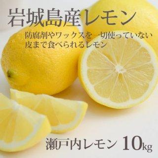 レモン 整品 10kg  果汁たっぷりレモン ハウス栽培 防腐剤ワックスなし 国産