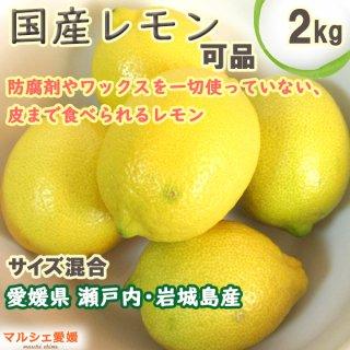 レモン 可品2kg サイズ混合 業務用家庭用 風すれ有 いわぎ島 国産 瀬戸内産