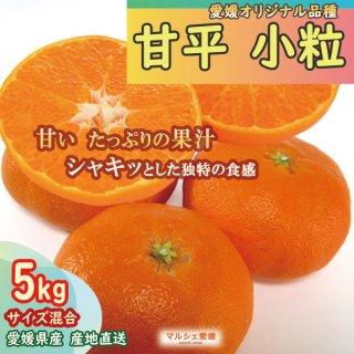 甘平 小粒 5kg サイズ混合 愛媛 みかん 産地直送 一部地域送料無料