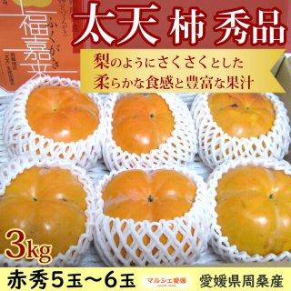太天柿 秀品 3kg 赤秀 愛媛県周桑産 たいてん 福嘉来 ふくがき