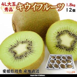 キウイフルーツ 秀品 4L 約1.8kg 大玉 ヘイワード 12玉 愛媛県周桑  一部地域送料無料