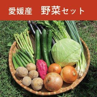 10種類の野菜セット 旬の野菜まるごと マルシェ愛媛