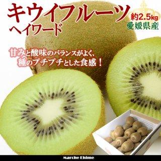 キウイフルーツ  約2.5kg Mサイズ ヘイワード 20〜25玉 贈答 愛媛県  一部地域送料無料