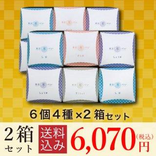 【送料込・大特価】<br>東京専べいニジュウマル6個(4種)×2箱セット