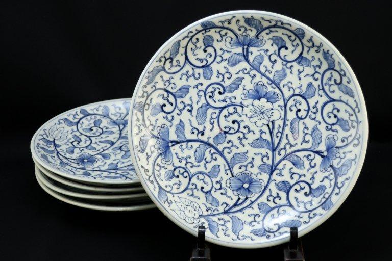 伊万里染付唐草文七寸皿 五枚組 / Imari Blue & White Plates  set of 5