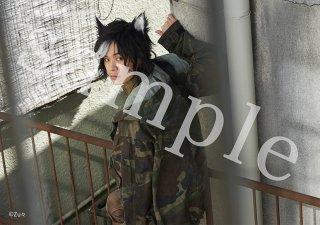 ★「いなくなった猫の話」イメージ写真(A5) 4