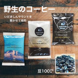 コーヒー豆3種(野生のコーヒー2種+キリマンジャロ)(おやしろカフェ)