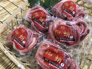 釜茹でヤナギタコ 1袋250g×5袋入(カネセン水産)