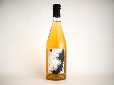 NATURAL WINE 「Falestar Pignoleto 2019 (白)」 x OJAS  <ナチュラルワインとローチョコレートのセット2>