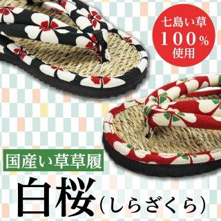 国産い草草履 白桜(しらざくら)