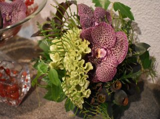 seasonal arrangement  S