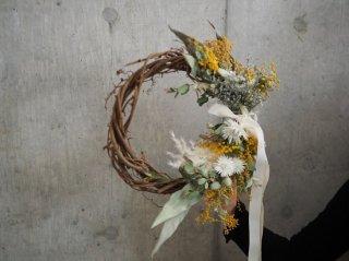 mimosa wreath Φ30cm